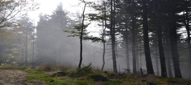 Szyndzielnia i Klimczok – krótka niedzielna wycieczka
