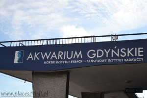 akwarium1