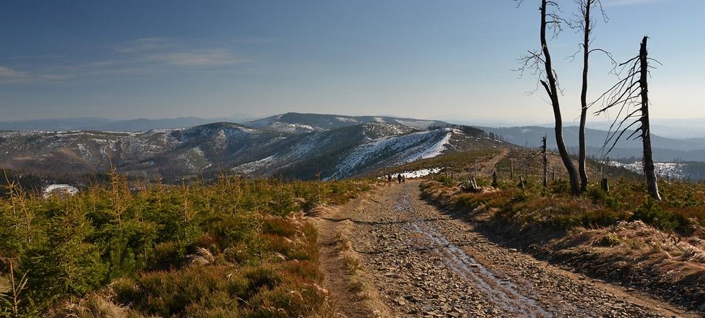 Skrzyczne: wiosenny spacer z przełęczy Salmopol