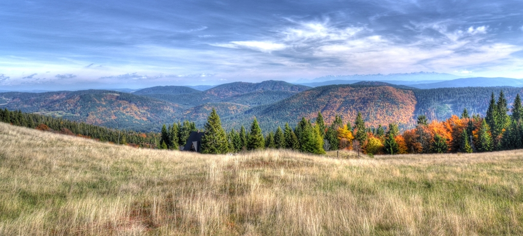 Rycerzowa – zobacz jak wygląda jesienią