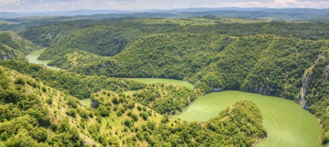 Kanion Uvac i kraina sępa płowego