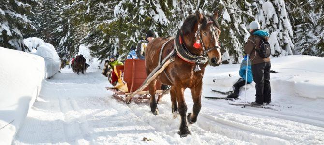 Kulig w Gorcach – Obidowa