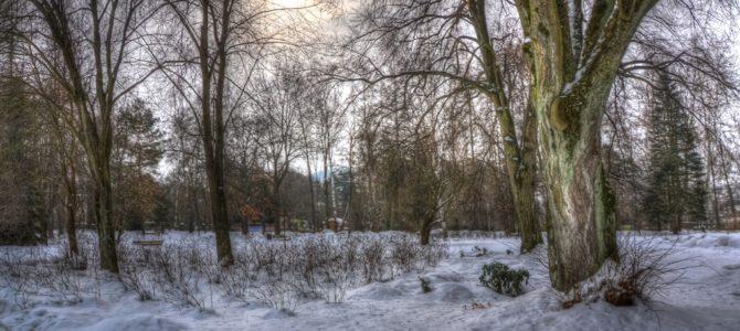 Rabka Zdrój z dzieckiem – pomysły na zimową porę