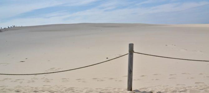 Wydma Łącka – ruchoma wydma koło Łeby