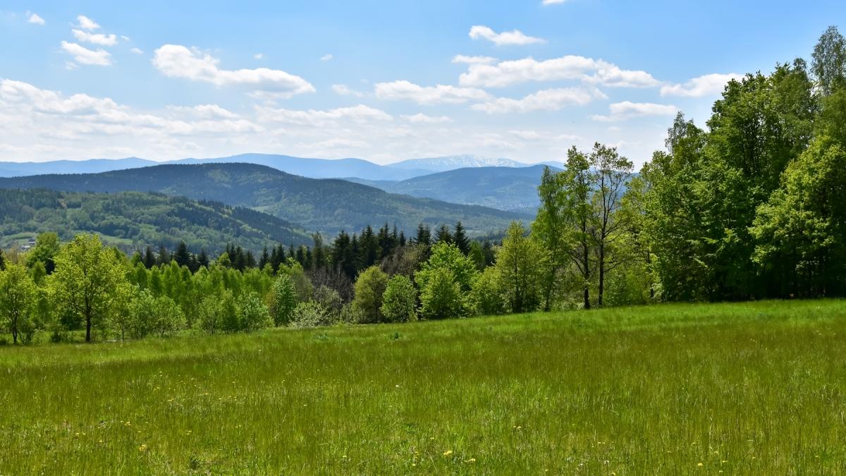 Z Palczy przez Chełm do Zembrzyc – Mały Szlak Beskidzki